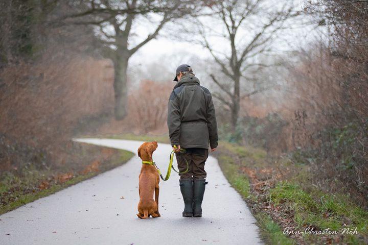 Wie-lernt-mein-Hund-Homepage